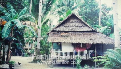 원주민들이 살고 있는 정글속 집